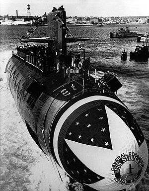 Picture of Sturgeon Class Ssn (637)